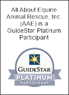See AAE on GuideStar