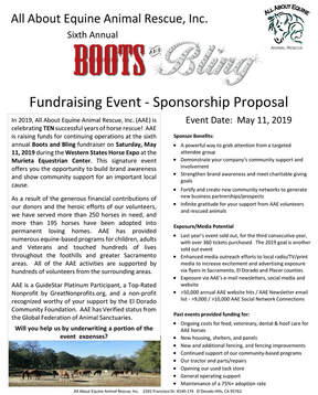 Boots and Bling Sponsorship