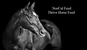 NorCal Feed Thrive Horse Feed